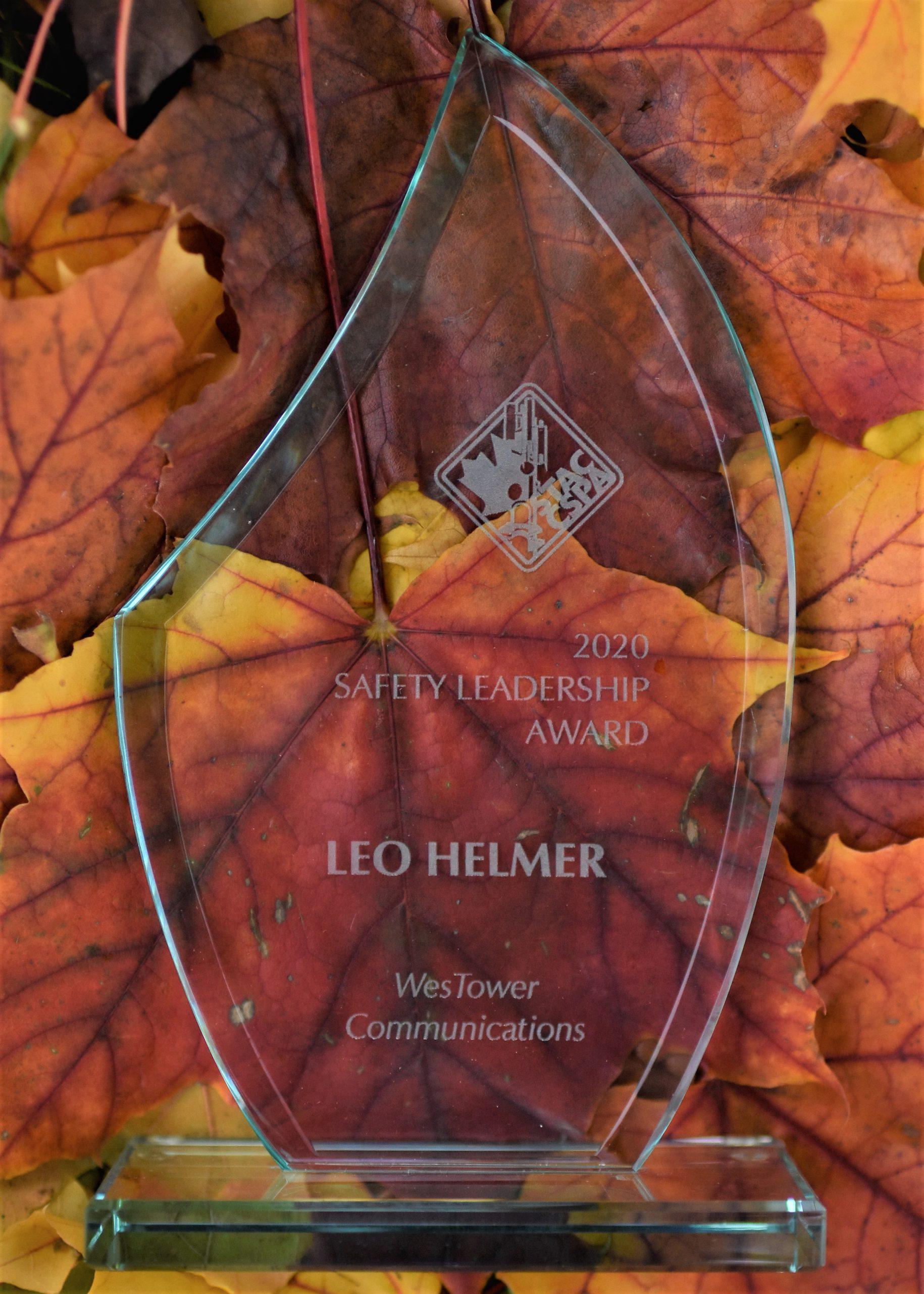 Leo Award 2 scaled 1